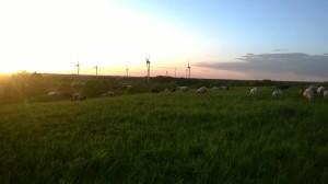 Abendpanorama auf der Deponie Loccum