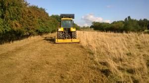 Altes Gras und die Erdhügel der Ameisen werden abgeschlägelt.